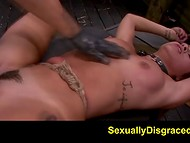Sexual torture of the tied minx with trimmed pussy passed in the BDSM atmosphere