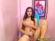 Shemale with awesome breasts perfectly sucks his big phallus in the homemade video 10