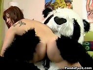 Young nymphomaniac got a playful panda bear, which fucked her sweet pussy