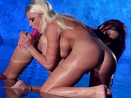 Two well-rounded porn actresses please their wet sissies in the shallow fountain
