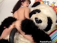 Plush panda suddenly revived and fucked red-headed schoolgirl in various poses 5