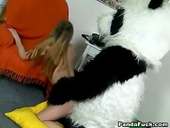Русская разведчица захватила в плен панду и устроила ему допрос с пристрастием 10