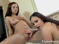 Marvelous Taylor Vixen and magnificent Aria Giovanni have fun in the bathtub 8
