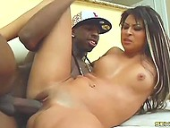 Stylish fellow with black skin easily persuades brunette Evan Valentine to have sex showing huge dick 8
