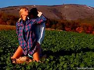 Очередной фотосет был посвящён аграрной тематике, поэтому тёлочка в клетчатой рубашке и партнёр совокуплялись не покладая рук 4
