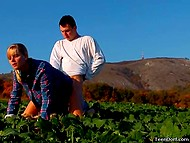 Очередной фотосет был посвящён аграрной тематике, поэтому тёлочка в клетчатой рубашке и партнёр совокуплялись не покладая рук 5