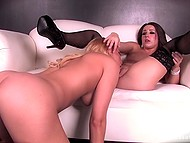 Vanessa Cage and seductive brunette in fashioned stockings trying to find out whose vagina is tastier 7