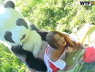 Unlike the wolf, salacious panda was going to fuck Little Red Riding Hood, not to eat 11