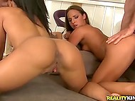 Hungarian doll Amirah Adara and tanned friend got slammed by two pals at their place 11