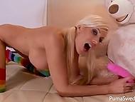 Шведка Puma Swede уже не маленькая и большой плюшевый медведь уступил место её любимой игрушки розовому самотыку 3