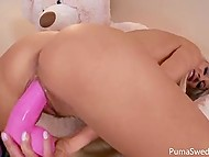 Шведка Puma Swede уже не маленькая и большой плюшевый медведь уступил место её любимой игрушки розовому самотыку 7