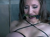 Lassie believed new friend and came into maniac's hands those tortured her body 8