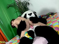 Brazen panda has came into scared girl's room and hardly fucks her to the fullest 3