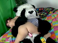 Brazen panda has came into scared girl's room and hardly fucks her to the fullest 5