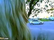 Скромная девушка повелась на уламывания русских пикаперов и прямо на улице взяла за щеку 4