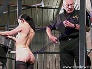Очкатый старикан проявил небывалый профессионализм, прикрепив верёвки к спине брюнетки при помощи степлера 4