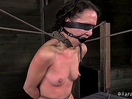 Dominating gal put pins on bounded captive's body, hit with scourge and used powerful vibrator 8