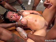 Juelz Ventura easily swallowed big cocks and brought each black dude to ejaculation 7