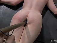 Using a special BDSM device tied blonde`s ass is getting penetrated by big black dildo