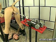 Norwegian mistress Monica Milf squirts on captive's face that is protruding from the cage 8