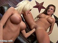 Big-boobied ladies removed sexy lingerie and brought fists into play on the black couch 5
