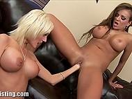 Великогрудые дамочки сняли сексуальное бельишко и пустили в ход кисти на чёрном диване 6