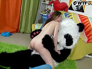 Girl got down on her knees to blow plushy panda's instrument and put shaved pussy on it 4