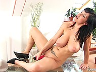 Brunette chick is alone at home so she starts to touche herself with help of Mr. Dildo