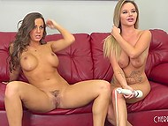 Experienced lesbians sat on red couch and taking clothes off began their weird sexual stuff 7