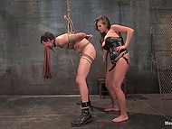 Buxom mistress in corset turned submissive into dog and gave him handjob after had slapped him well