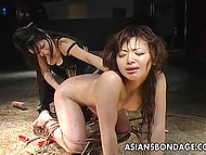 Lustful Japanese females have enough devices in their dungeon to punish tied up prisoner roughly