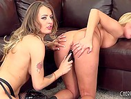 Attractive girls want entertainments so they decide to have a little fun with toys 5