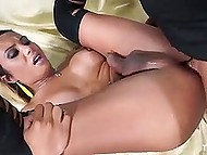 Vicious man and shemale in stockings are equal in sex: blowjob for blowjob and anal for anal 7