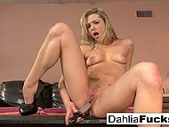 Splendid blonde Dahlia Sky lives alone in apartment and can have fun with vibrator any time 9