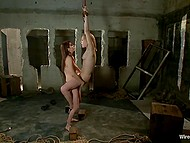 Pain and pleasure are always been for them a great inspiration for sexual act 6