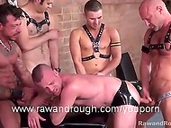 Excited twinks jerk off and watch bald friend penetrating submissive's asshole from behind