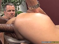 Male supervises his eye-catching wife spending great time with big black cock 10