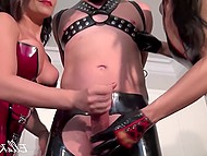 Two mistresses in latex suits handle tied up male's erect cock to make him cum in femdom video 4