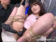 Tied up Japanese babe in transparent panties punished by perverted males with vibrators
