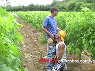 French gay brings man in safety vest to vineyards and sucks his cock well in amateur twink video 8