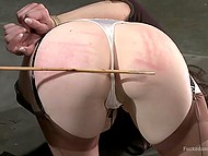 Torrid female Natalie Minx with long legs had never been penetrated so roughly before 3