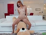 Girl rides strapon attached to plushy bear then boyfriend comes and gives cock for sucking