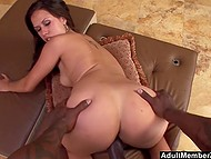 Sexy Latina with pulled down panties and bra stands in front of black bull and he shoves big cock into her cunt quickly 4