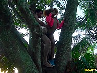 There are no people in the park so guy can fuck Ebony girlfriend on tire then couple climbs on the tree