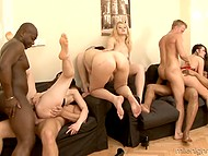 Immoral whores enjoy double penetration taking part in hot orgy with powerful black stallions 9