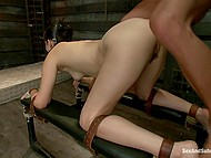 Female with long legs Bobbi Starr gives pleasure to man who inserted hook in rear while sneaking inside  11