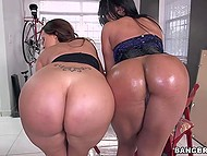 Two big-assed women suck and discuss the neighbor's big...