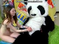 Nice panda toy with pink cock surprises innocent-looking schoolgirl with a great fuck