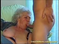 Sexy porn stars boobs