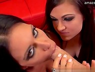 Two slutty ladies occupied with one erected cock in front of the camera